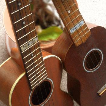 custom named 10th fret marker for ukulele