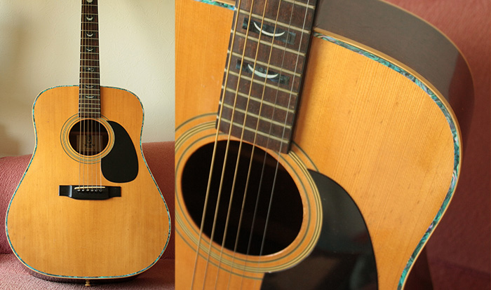 Image is loading Acoustic-Guitar-Vine-Graphic-Decal-Sticker-full-size-