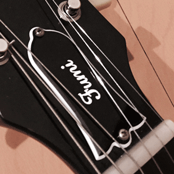 les paul type truss rod cover custom engraved